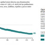 Disminuye población animal en cuatro décadas